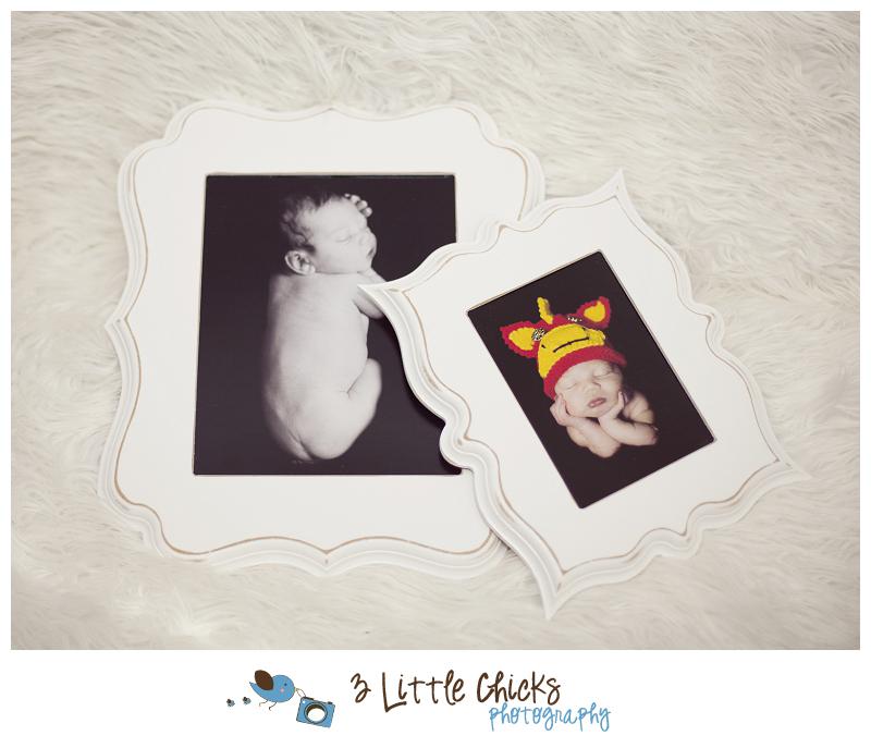 Jasper Lilly Designer Frames|Product Highlight|Central Virginia ...